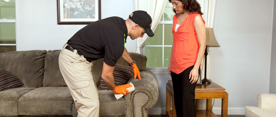 Lancaster, OH carpet upholstery cleaning